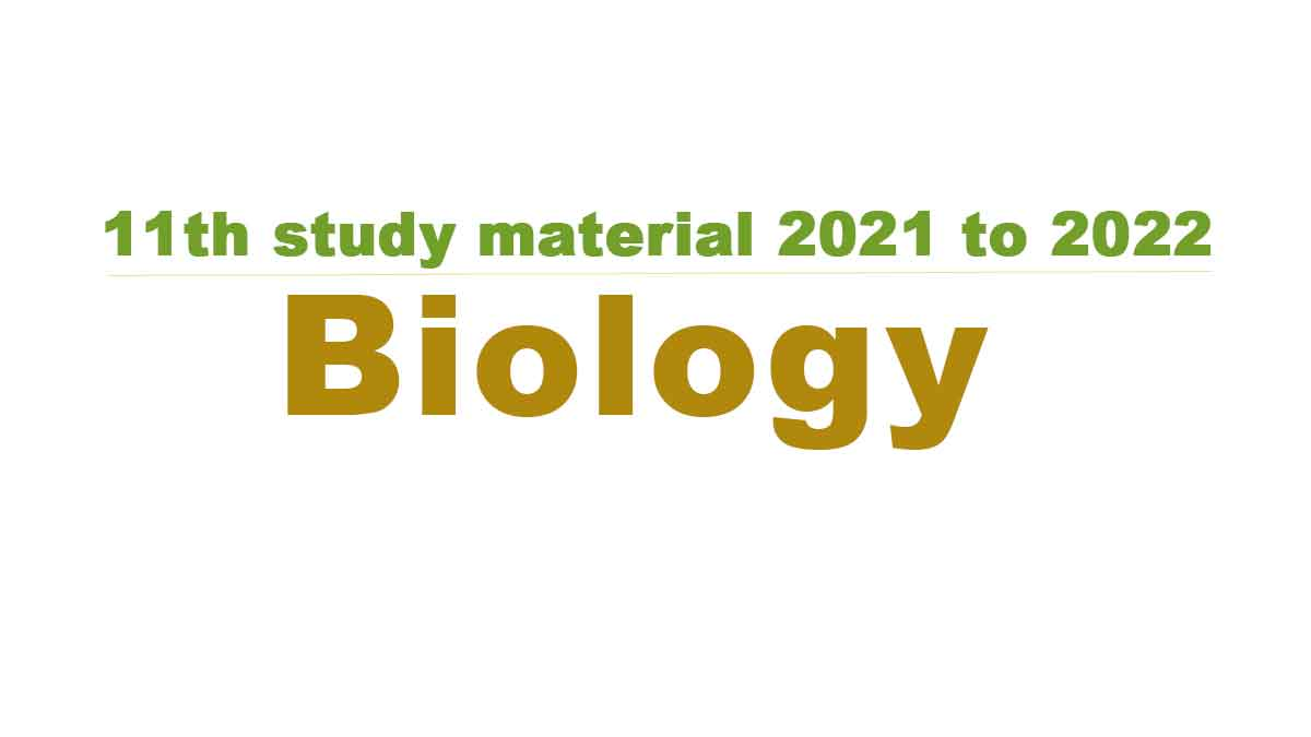 11th Biologystudy material 2021 to 2022
