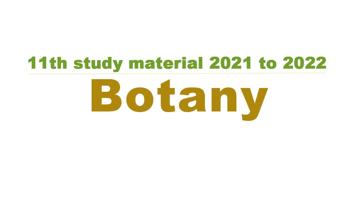 11th Botany study material 2021 to 2022