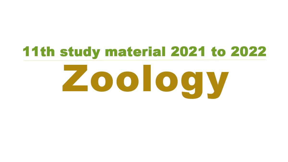 11th Zoology study material 2021 to 2022